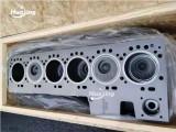 6D114 Cylinder Block Assy